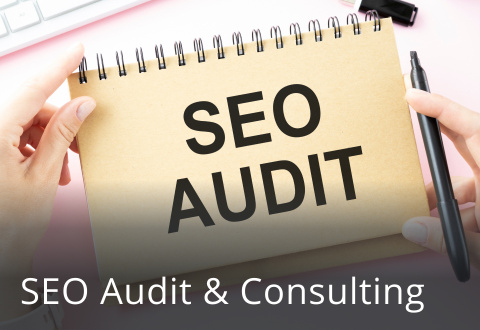 SEO Audit & Consulting